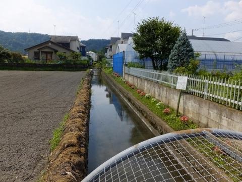 羽村市の羽用水路