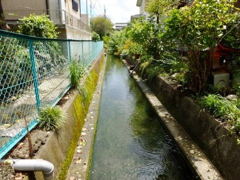 上野原用水
