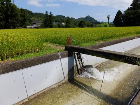 上野原用水・左岸へ分水