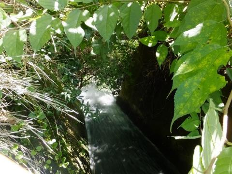 桂川左岸・上野原用水終点