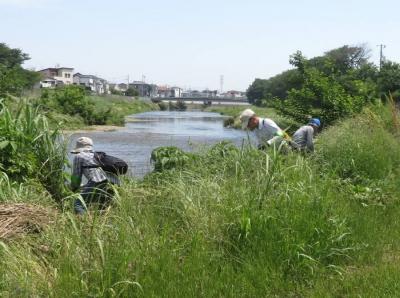 gyouji20200604-5.jpg