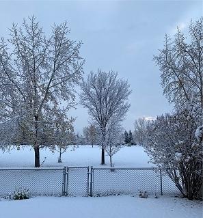 10月14日 雪