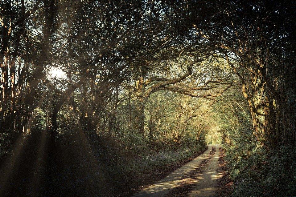 フリー写真 2020年使用予定イギリス小道