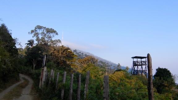 mountain1102