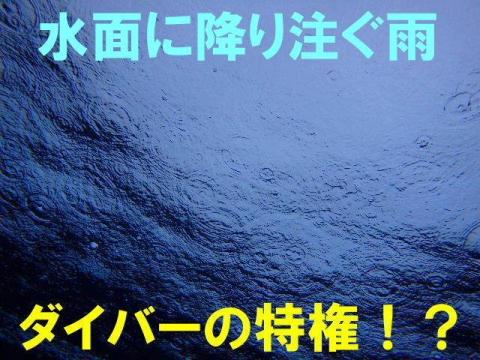 2020_0523-2014_0505.jpg