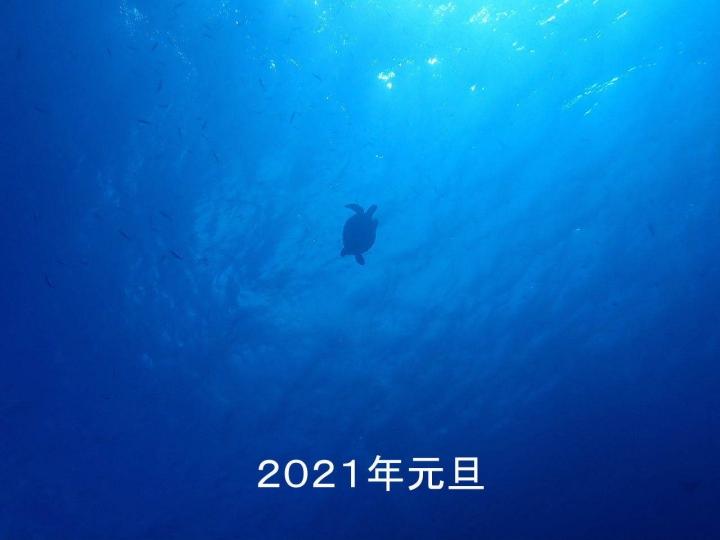 2021_01010001.jpg