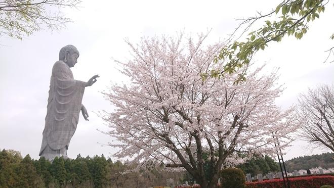 ushikudaibutsu210401a.jpg