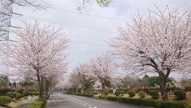 ushikudaibutsu210401b.jpg