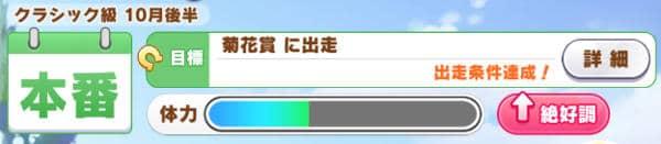 キングヘイロー菊花賞直後01