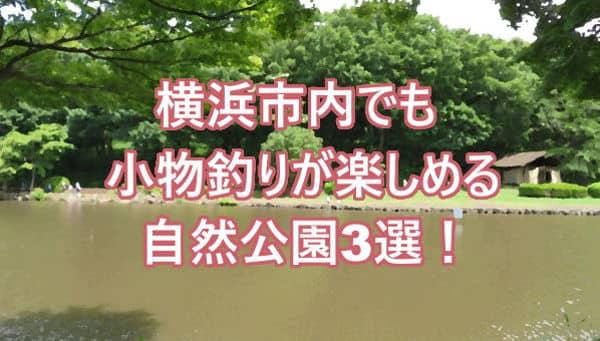 横浜小物釣りアイキャッチ01
