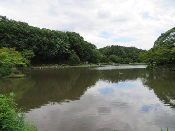 大池公園02