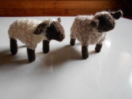 羊DSCN0682