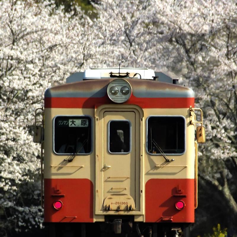 _4060107 いすみ鉄道 西畑 201904 take1b