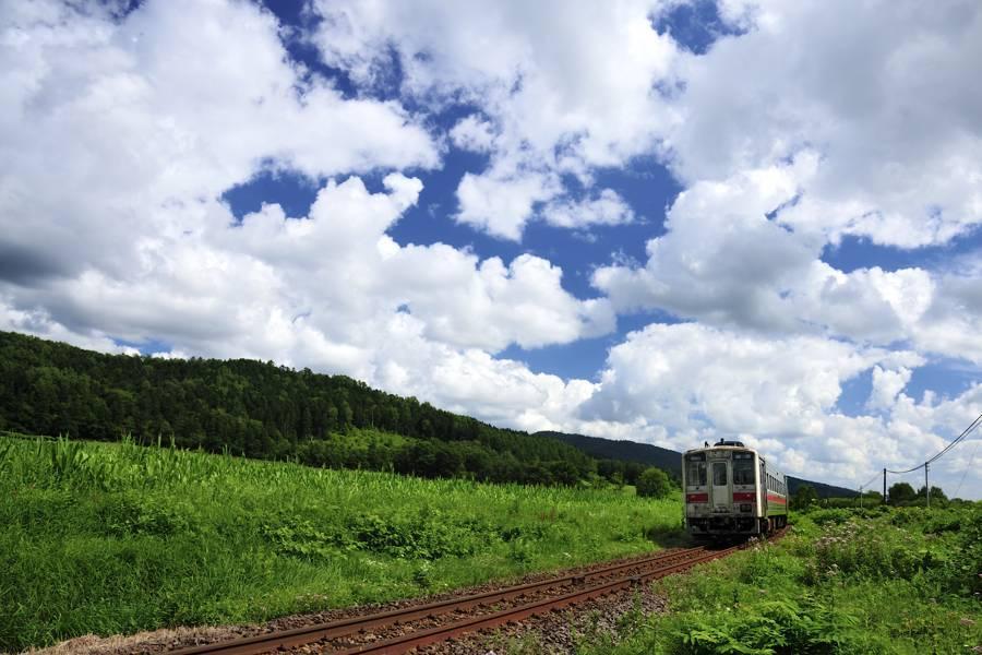 douhoku20128D700_012take1b.jpg
