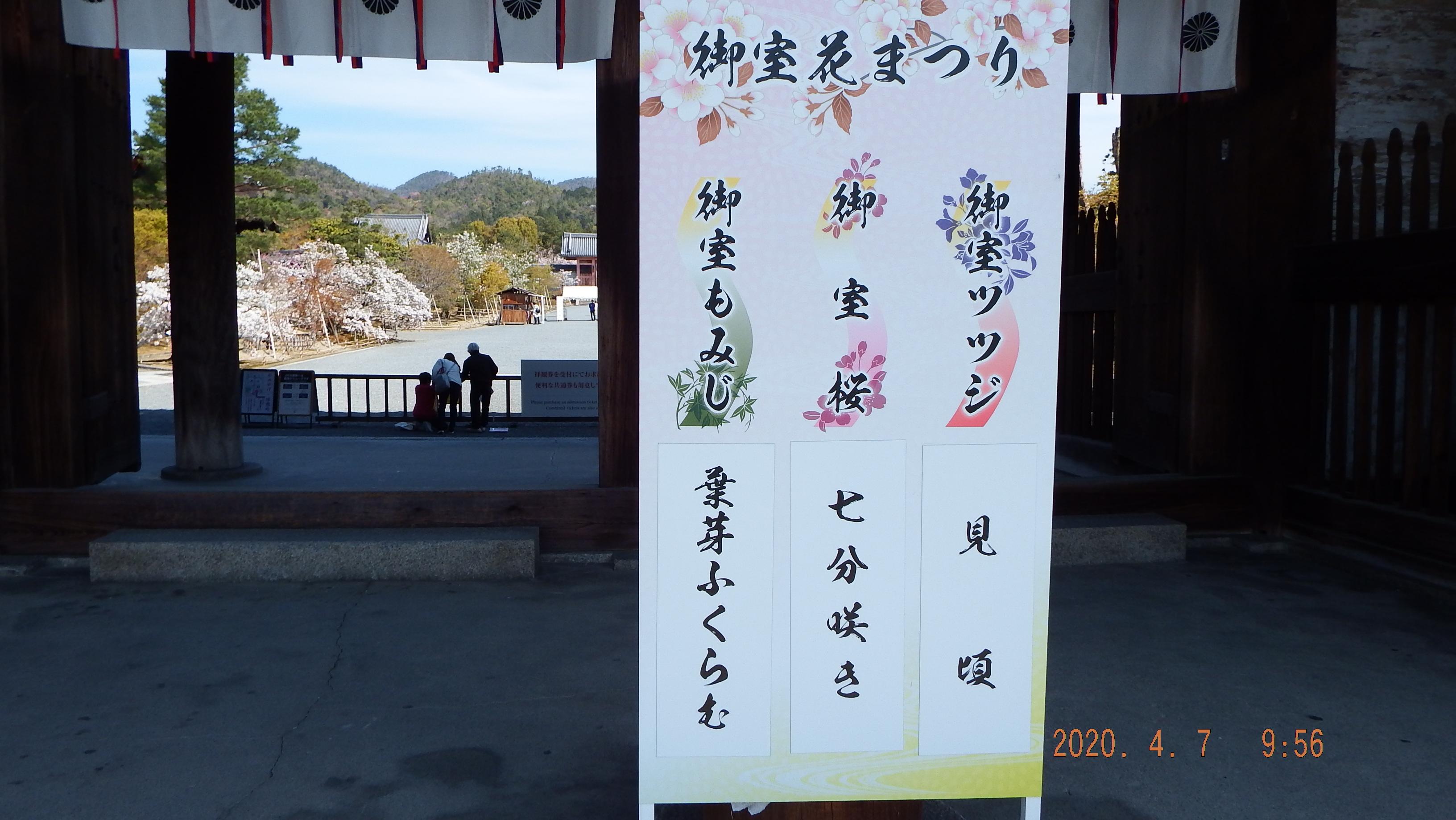 20040711.jpg