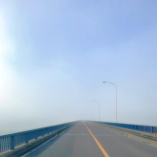500 大芦橋