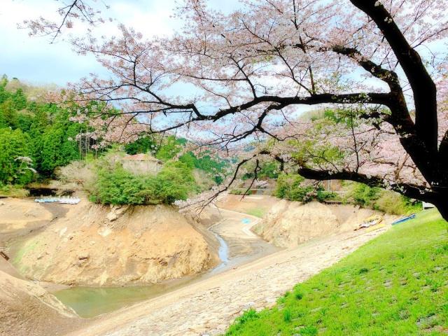 46 鎌北湖 (3)