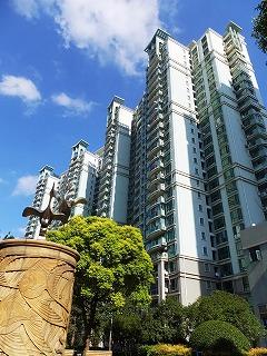 上海将棋交流 208