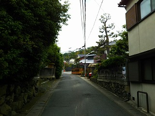 DSC_0721-1.jpg