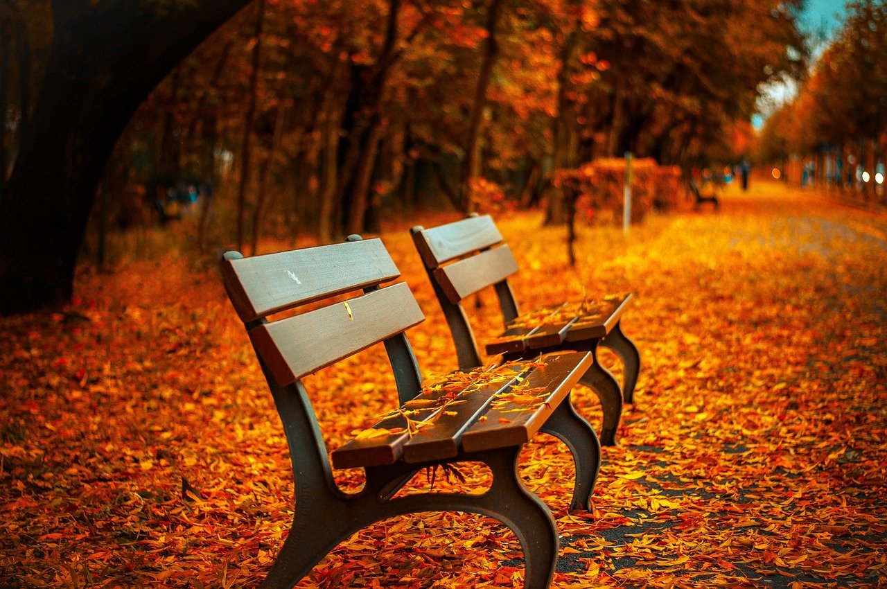 benches-560435_1280.jpg