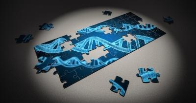 puzzle-2500333_1280.jpg