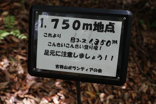 re2804.jpg