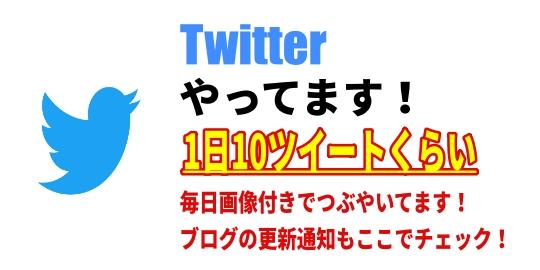 ブログ用TWバナー