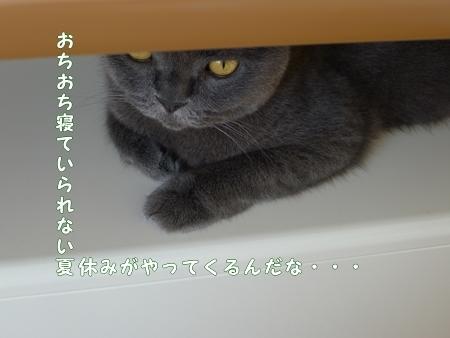 P1190499.jpg