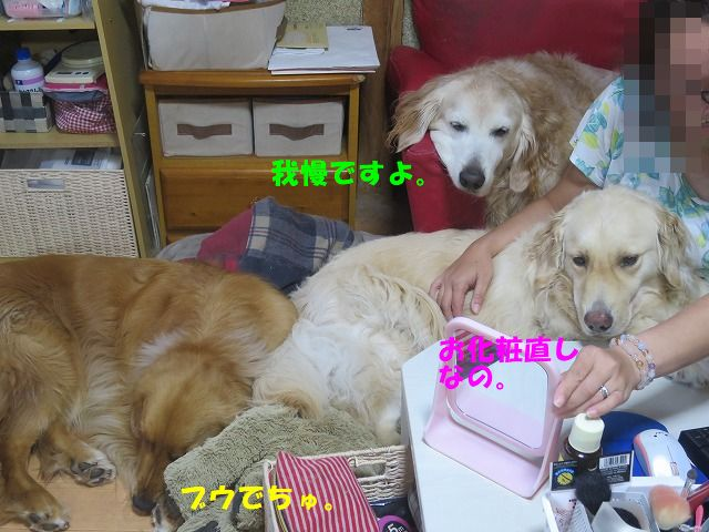 IMG_7686.jpg