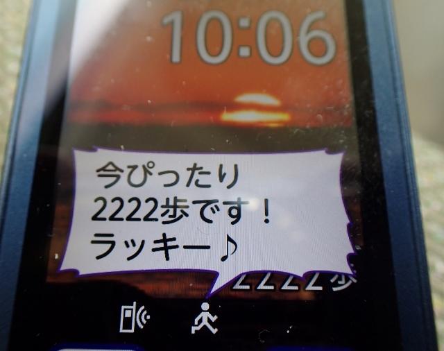 9P5130008 (640x506)