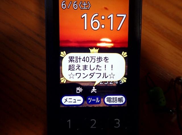 3P6060011 (640x473)