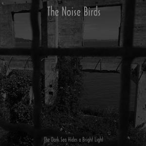NOISE BIRDS 1
