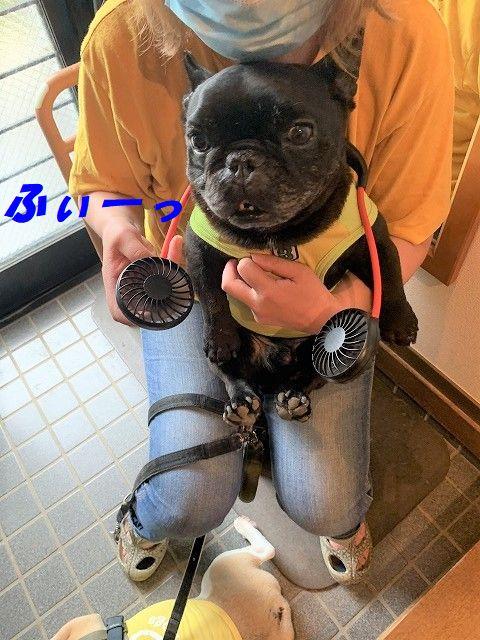 IMG_2277(1).jpg