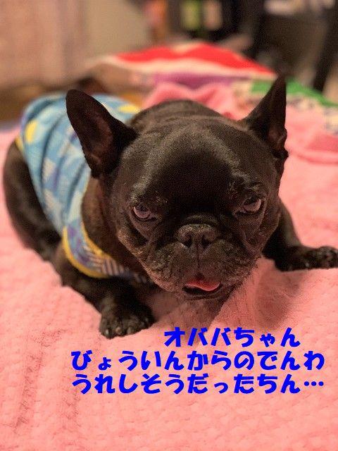 IMG_4097(Edited).jpg