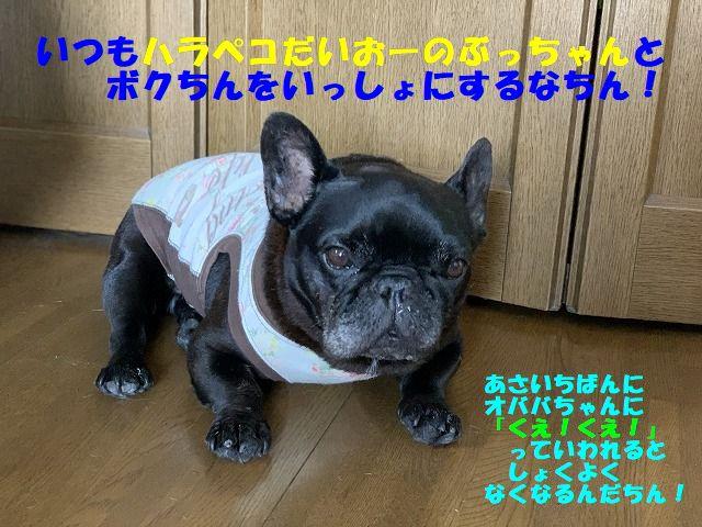 IMG_4711(Edited).jpg