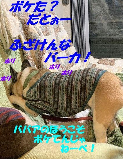 IMG_4829(2).jpg