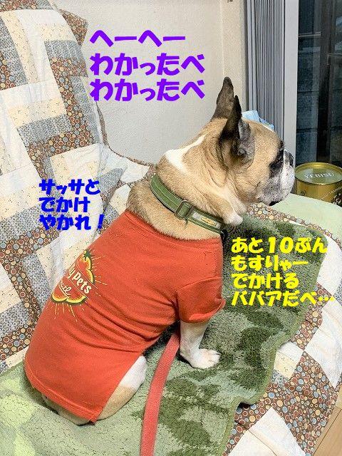 IMG_5159(1).jpg