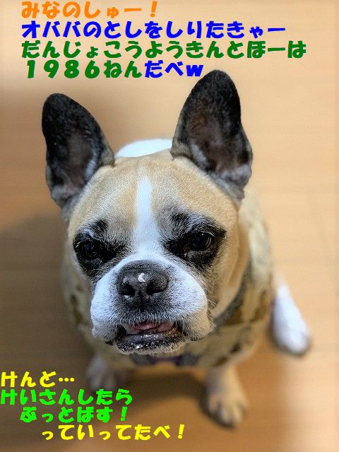 IMG_8246(Edited)_20200401151032bda.jpg