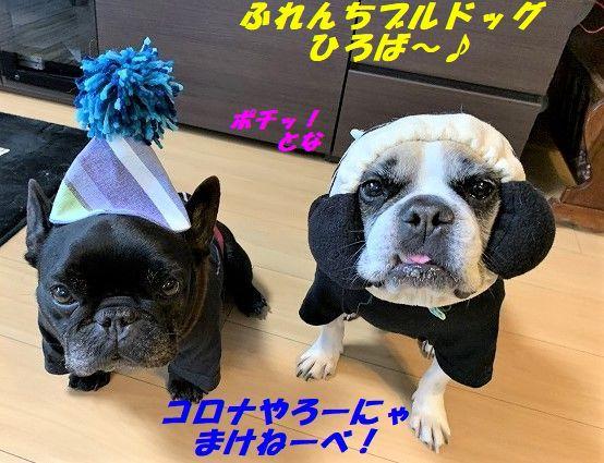 hiroba_20200501104559fe0.jpg