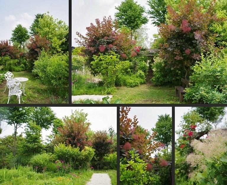 IMGP5880-horz-vert-vert.jpg