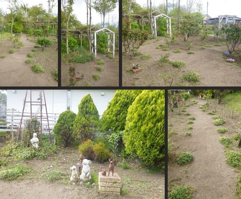 P2650431-horz-tile-vert.jpg