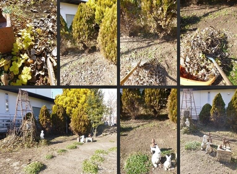 P2750410-horz-vert.jpg
