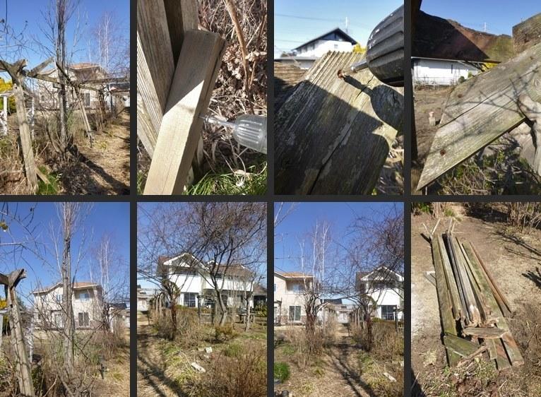 P2750981-horz-vert.jpg