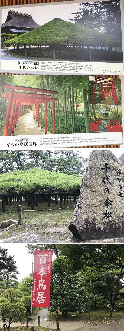 20200630中津万象園1