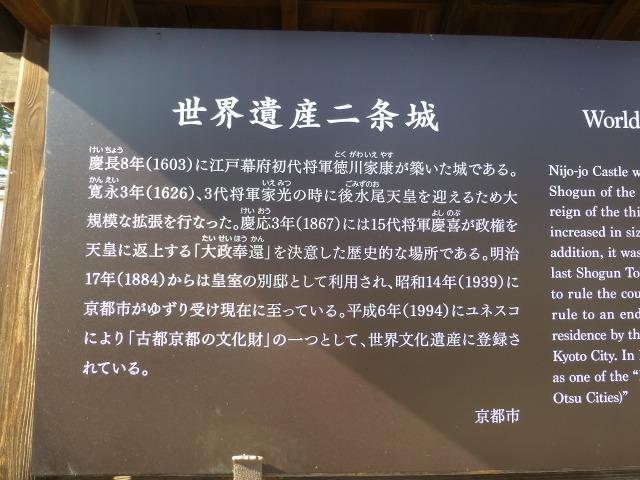 P1100607c.jpg