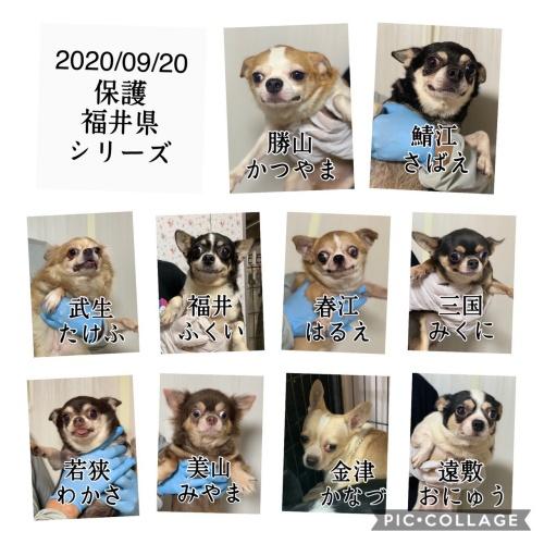 mini2020福井2020 0921