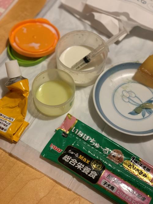 mini2020IMG_7901 (編集済み)