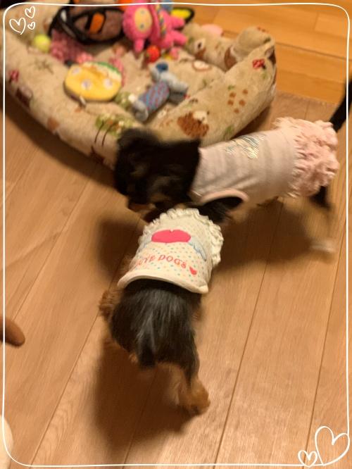 mini2021IMG_1022 (編集済み)