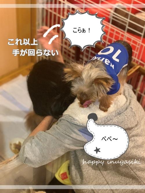 mini2021IMG_3032 (編集済み)
