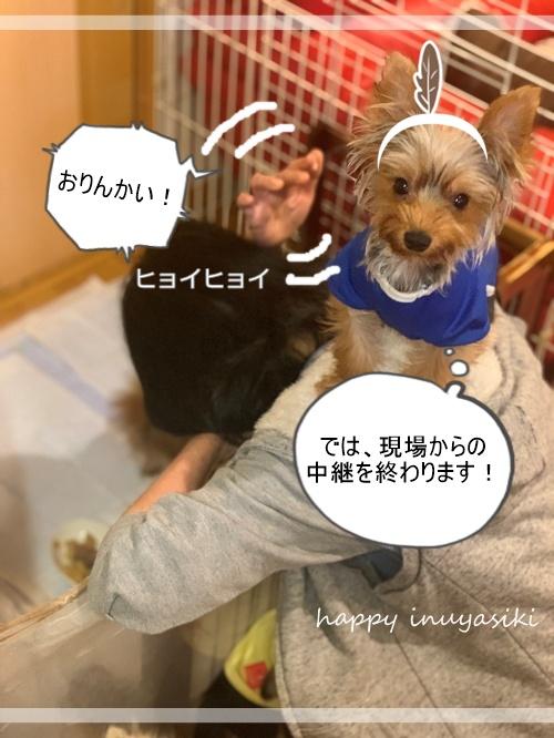 mini2021IMG_3033 (編集済み)